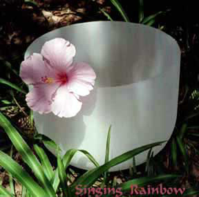 Singing Rainbow Crystal Bowl and Hibiscus